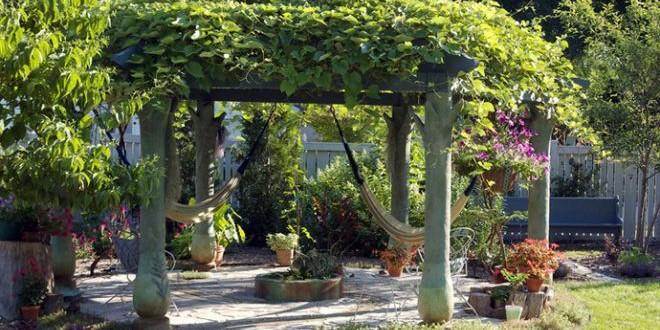 Jak postavit pergolu – návod s inspirativními fotkami
