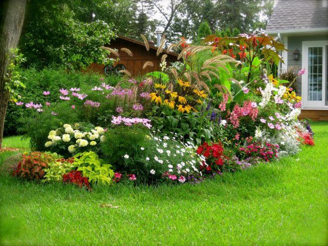TIPY na dekoratívne záhrady